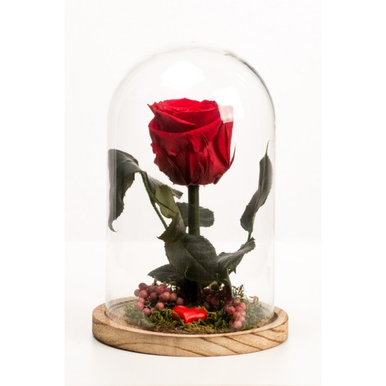 Roses For Ever Love 18