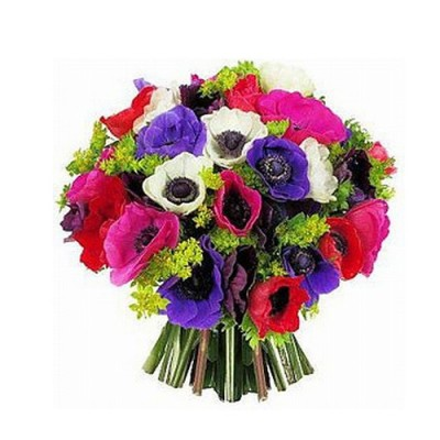 A Bouquet of Anemonew M30